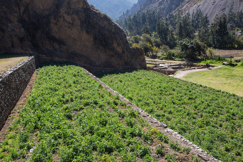Cusco & Sacred Valley_MG_2944.jpg