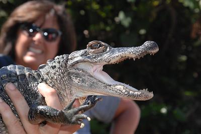 5-5-2016 ALFA Everglades @ Key Biscayne