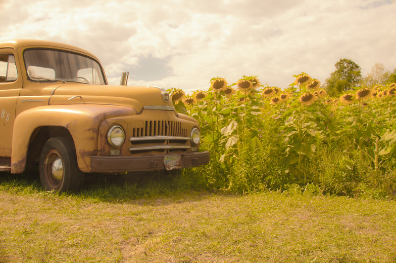 Yellow Truck Within The Sun
