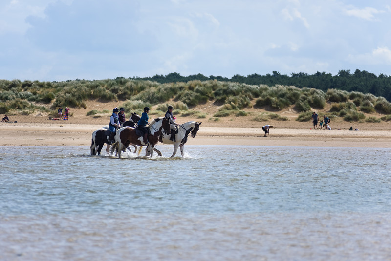 Holkham Beach Ride August 2019 (20).jpg