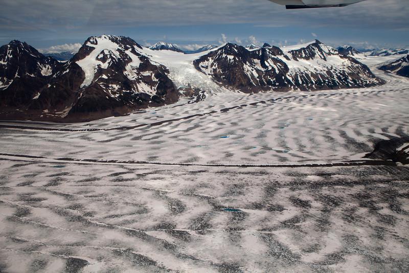 Alaska Icy Bay-3478.jpg