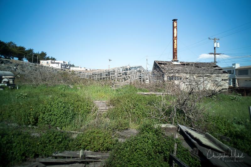 150223_The Rose Factory University Mound_8436.jpg