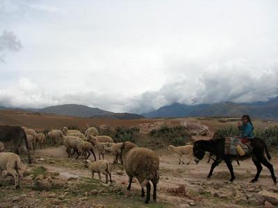 Peru - November 2007