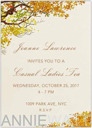 October-25-2017-Jeanne-Lawrence-hosts-Casual-Ladies-Tea