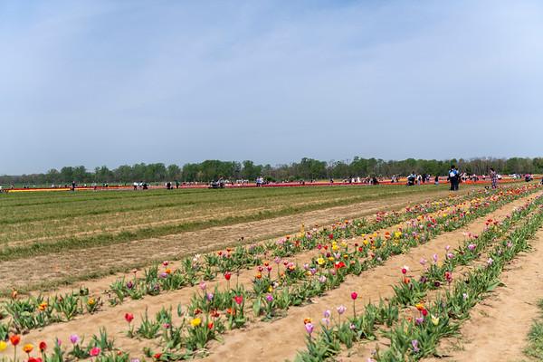 20210428 Holland Ridge Farm
