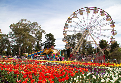 Floriade 2012, Canberra