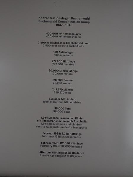 P7125929.JPG