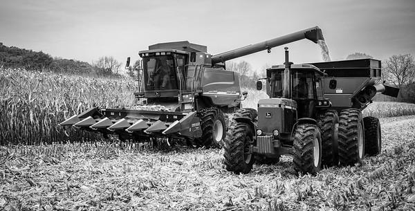 10-19-2020-harvest