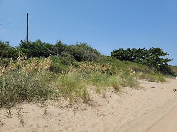 VA, Norfolk - Sarah Constant Beach Park