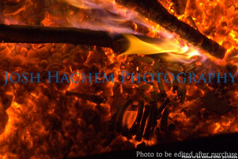 1.3.2009 Blowing Stuff up again (45).jpg