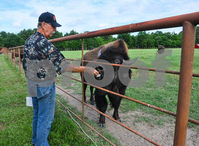 6/8/18 310 Bison Ranch Tour by Jessica Payne