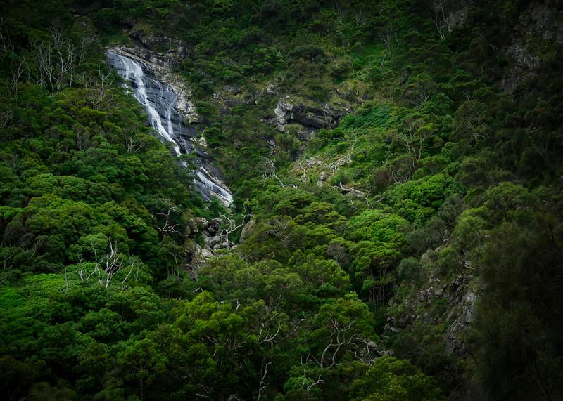 Carisbrook Falls