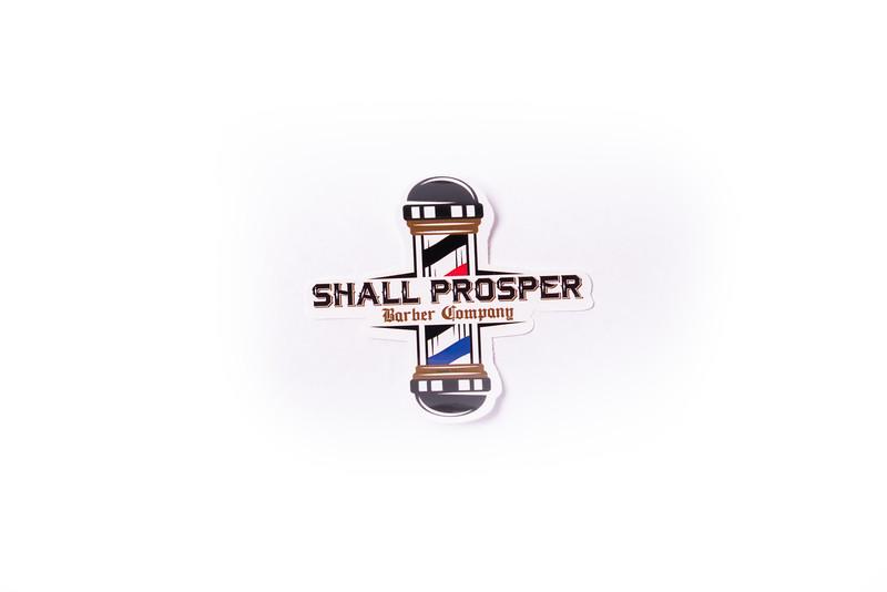 Shall Prosper-5.jpg