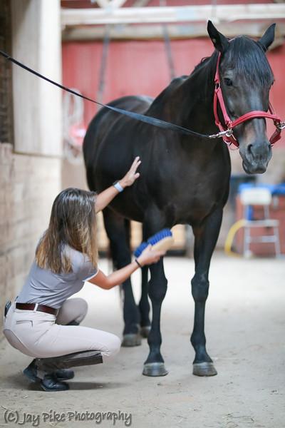 September 4, 2021 - Horse Session