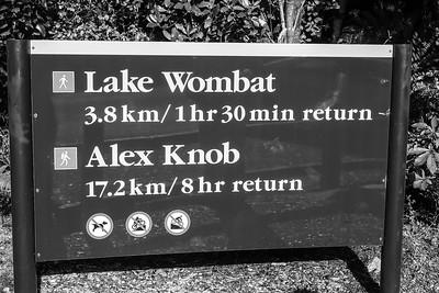 Alex Knob 2.1.2015