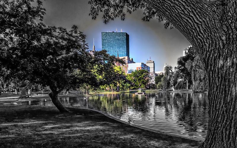 Boston MA public garden fine art 1.jpg
