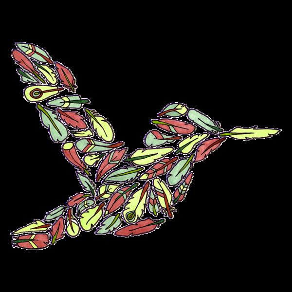 FeatherHummingbird3.png
