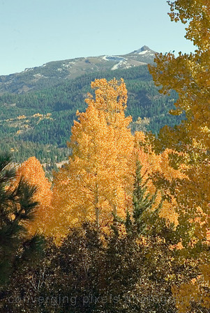 Autumn in the Sierras. 1053