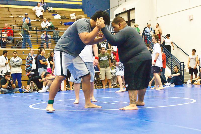 MMA_Houston_20090418_0983.jpg