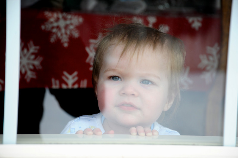 2011/1/5 - When Grandpa goes out in the back yard, Olin has to watch through the window. It is always so cute. This time I had the camera and was ready. We are good buddies and we have so much fun together. I will miss him when he moves out of our home.