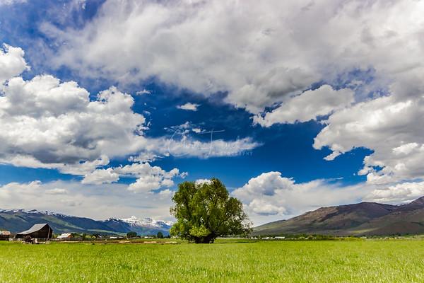 Farm in Huntsville, Utah
