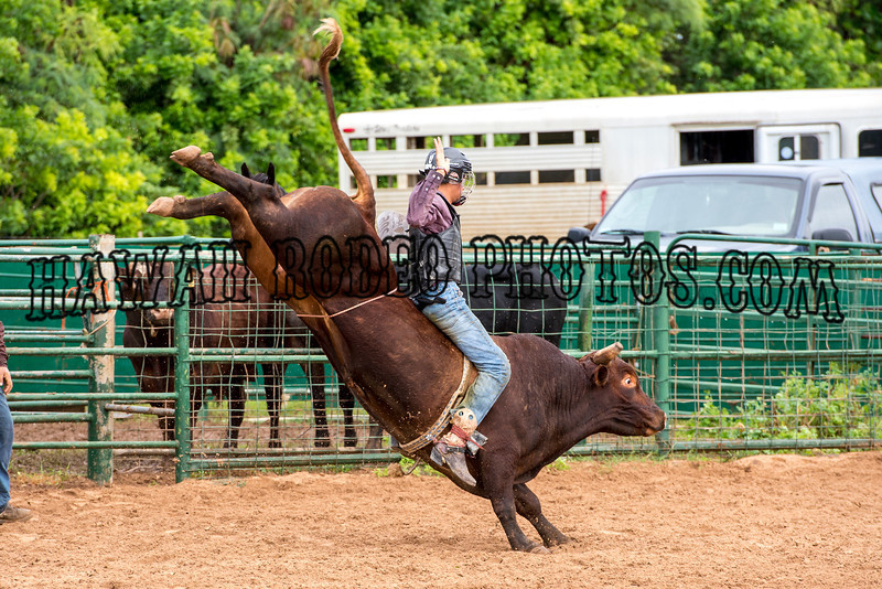 JUNIOR AND HIGH SCHOOL RODEO FEBRUARY 1,   2014