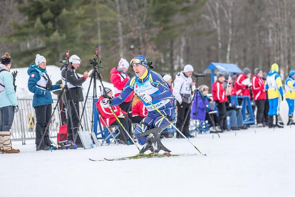 2015 IPC Nordic Skiing World Championships