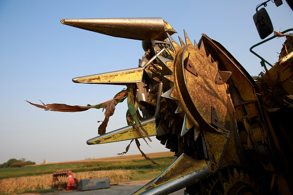 2008 South Dakota