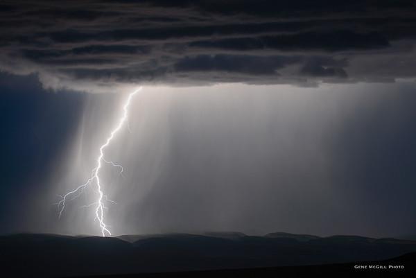 Monsoon Lightning, 2017