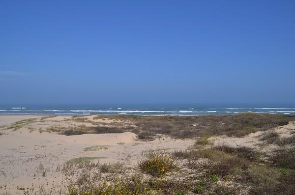 2014-02 South Padre Island