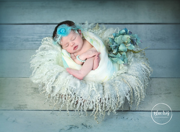 Braylee's Newborn Portrait Gallery  (for FB w/logos)