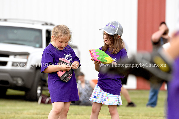 Athens T-ball Purple vs Blue 6-13-2017