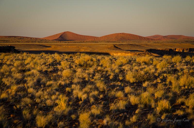 Namibia-4362.jpg