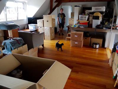 Pre-move; Move-in (2015)