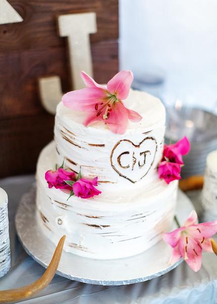 Macheski Fuller Wedding171.jpg