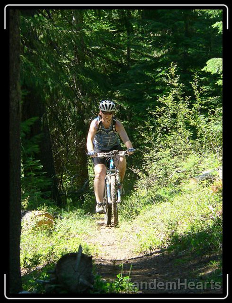 This is typical of the easier trails we rode.