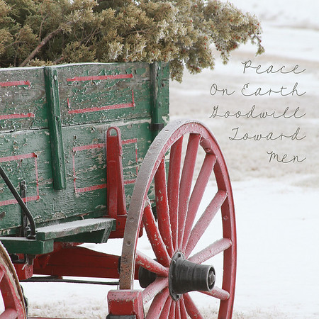 Christmas & Winter Scenes Series