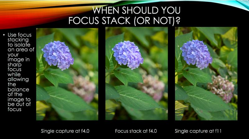 12 focus stack.png