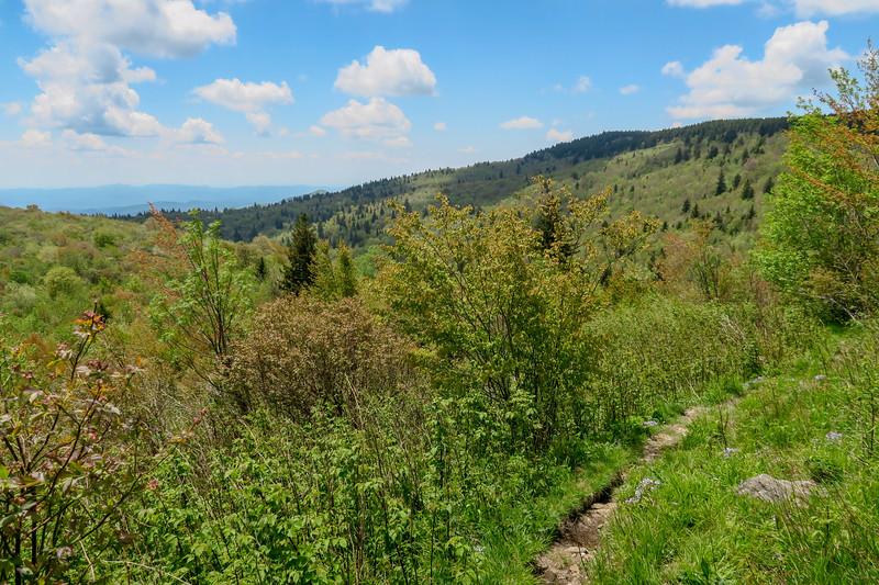 Mountains-to-Sea Trail -- 5,780'