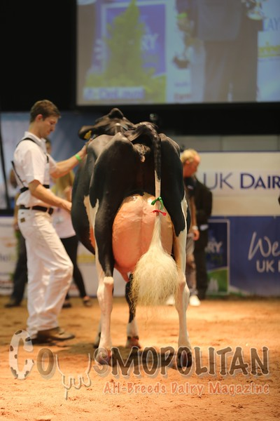 UK Dairy Day 2016