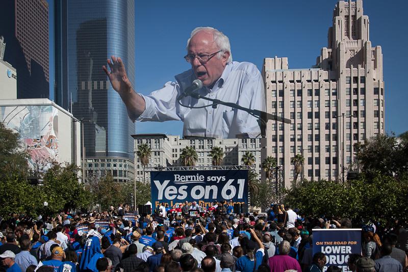 November 7 - Bernie.jpg