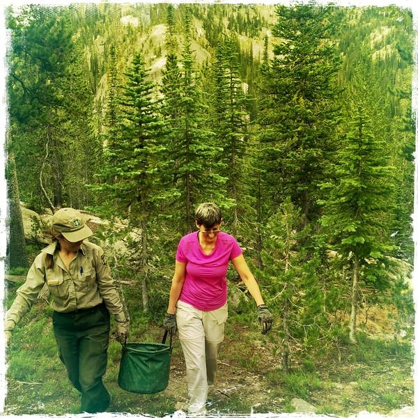 Wilderness Volunteers 07262016_Bighorn Crags_05.jpg