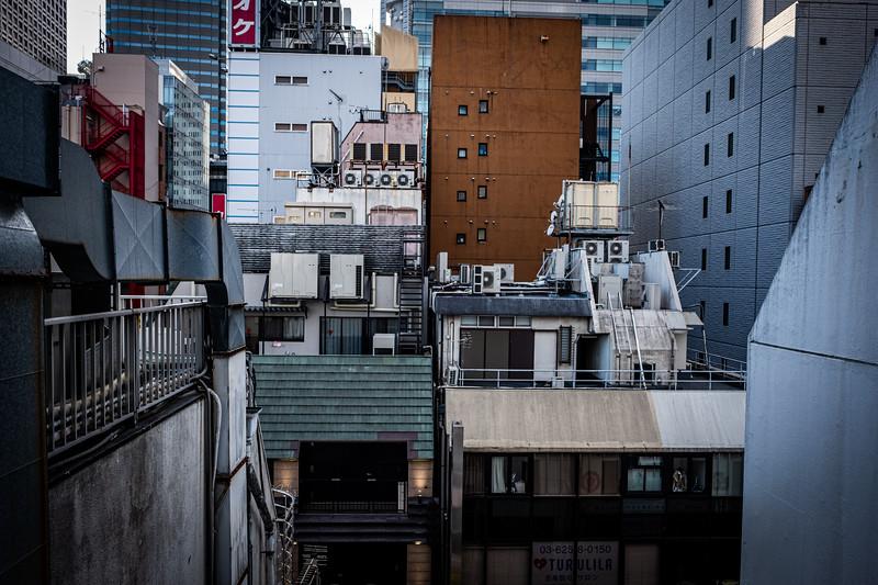 Tokyo -9831.jpg