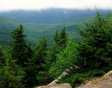 Chocorua: Brook-Liberty Loop (July 24)