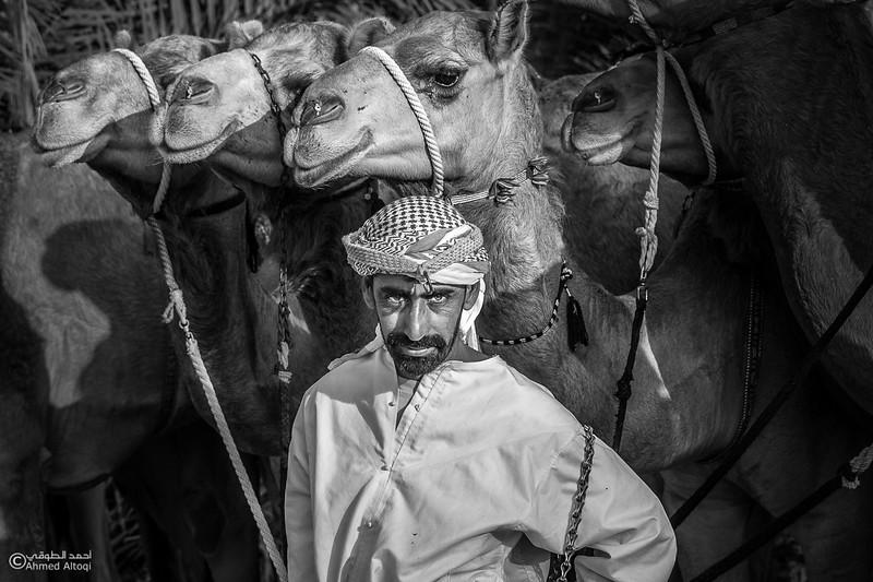 hipa 5-camels- B&W.jpg