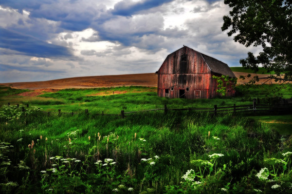 barns, rustic, Washington, farms