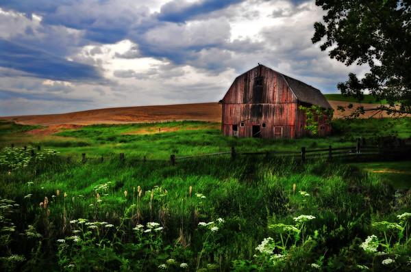 barns, rustic, Washington, farms