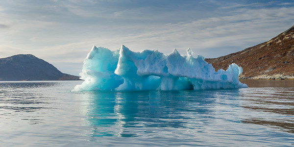 Icebergs in the Fjords