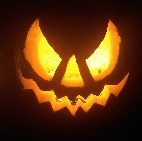 October 2020: The Great Pumpkin Contest