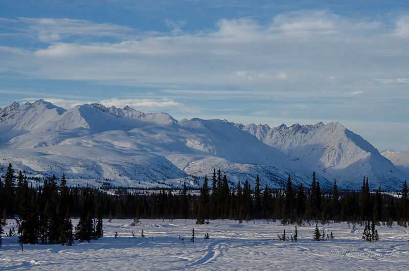 USA-alaska-Alaska Railroad-2093.jpg